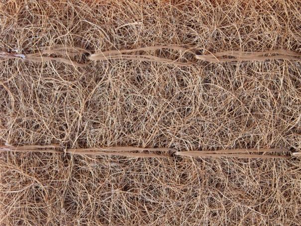 Biostuoia in cocco ESM